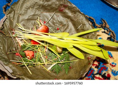 Young yellow plants shoot to worship in the hindu festival Dashain. Also called Jamara; Young crops shoot of corn, rice, wheat etc. They are grown in dark place with occasional lights for 10 days.