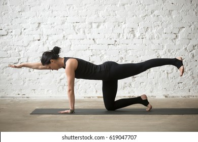 Young yogi attractive woman practicing yoga concept, standing in Donkey, Kick exercise, Bird dog pose, working out, wearing sportswear, black tank top and pants, full length, white loft background