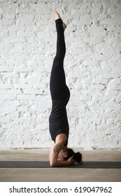 Young yogi attractive woman practicing yoga concept, standing in salamba sirsasana exercise, headstand pose, working out, wearing sportswear, black tank top, pants, full length, white loft background