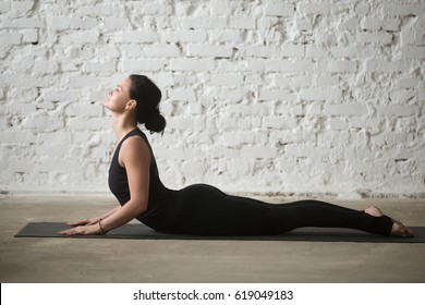 Young yogi attractive woman practicing yoga concept, stretching in Cobra exercise, Bhujangasana pose, working out, wearing sportswear, black tank top and pants, full length, white loft background