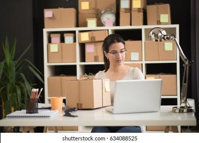 Younge entreprenuer, business owner work at home, alpha generation life sistem