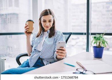 Youthful Caucasian employee in smart casual clothing using cellular application for social networking during coffee break in office interior, millennial woman sending sms during mobile messaging