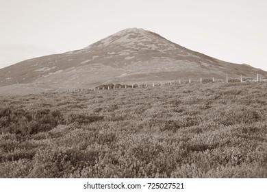 Yr Eifl Mountains near Llithfaen Pwllheli Llyn Peninsula Wales UK in Black and White Sepia Tone
