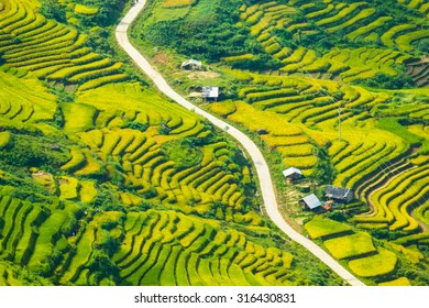 Yty Vietnam September 11 2015 Vietnam Paddy fields, terraced culture in Yty Laocai Vietnam.Yty is an attractive destination for tourists with the wild beauty in north Vietnam
