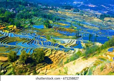 Yuanyang terrace, Yunnan, China