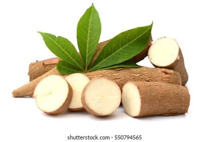 yucca (cassava) root with slice isolated on white