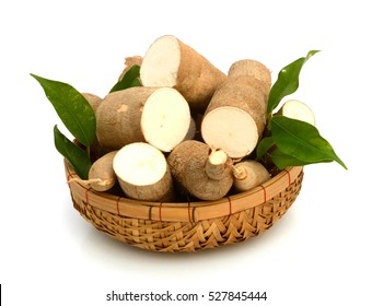 yucca cassava vegetables on white background