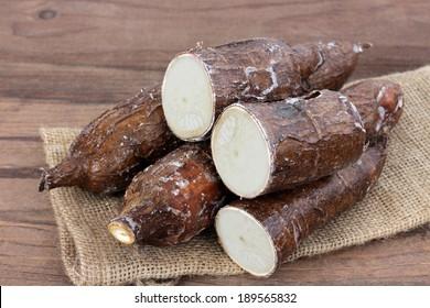 yucca root as sample display at market place