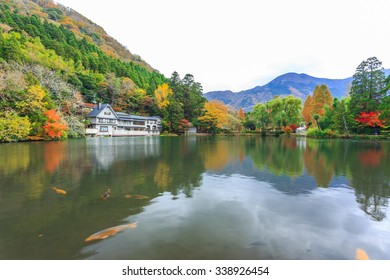 Yufuin is a popular Onsen resort in Kyushu, Japan. Lake Kinrinko is another natural landmark of Yufuin besides Yufu Mountain.