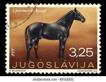 YUGOSLAVIA - CIRCA 1969: a stamp printed by Yugoslavia shows Ljutomer's Horse, circa 1969