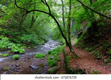Yukawa and Shinanoji Nature Hiking Trail, Karuizawa, Nagano, Japan. Images for outdoor activities (e.g. hiking, walking, trekking, forest bathing and ecotourism).