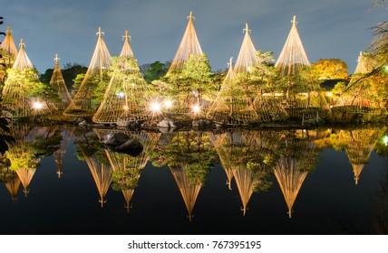 Yukigakoi with Japan pine tree reflect on water when light up at Shirotori garden Aichi Nagoya