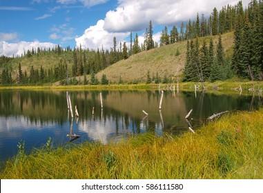Yukon landscape near Whitehorse, Canada