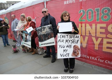 yulin dog festival protestors Chinese New Year, year of the dog London, February 2017. stock, photo, photograph, picture, image