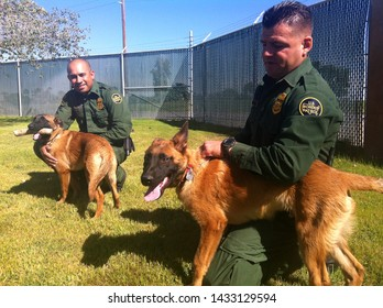 Yuma Sector, Ariz. / US - April 11, 2013: Customs and Border Protection agents walk their two newest canine agents, Kayla and Kirpy, through training exercises. 9362 copy