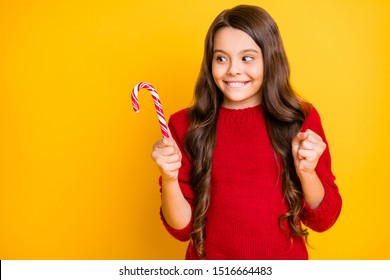 Yummy cant wait! Portrait of funny funky addicted brunette curly hair child hold christmas mint candy cane enjoy want eat on newyear party wear red pullover isolated over yellow color background