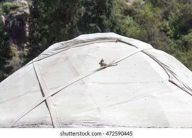 yurt in Kyrgyzstan in nature