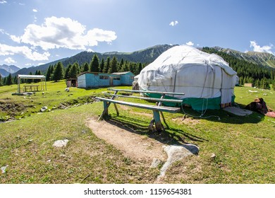 yurt in the mountains on the green field