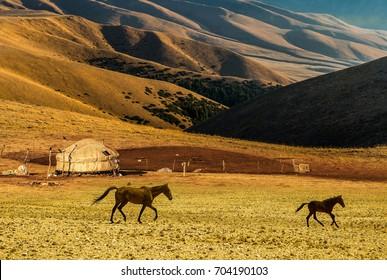 Yurt at the silk road (Tien Shan Mountains in Kyrgyztan)