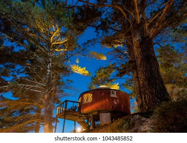 Yurt/tent under starlit sky in the woods, Big Sur, California