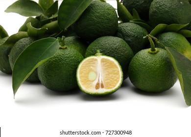 Yuzu citrus fruits, green yuzu berries,