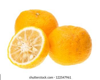 Yuzu fruits (Hybrid between Citrus ichangensis and Citrus reticulata) famous for aromatic zest