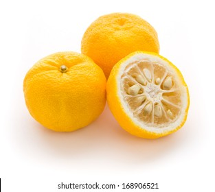 Yuzu fruits (Hybrid between Citrus ichangensis and Citrus reticulata) famous for aromatic zest