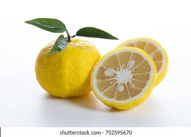 Yuzu. Japanese citron
