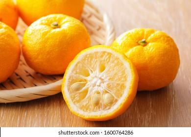 Yuzu on wooden table.(Japanese citron)