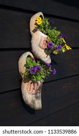 Zaanse Schans, Netherlands, Aug 2016: Clogs as flower pots at Zaanse Schans, Netherlands
