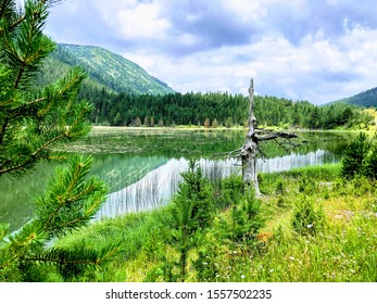 Zabljak Montenegro beautiful nature view