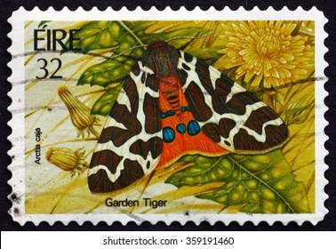 ZAGREB, CROATIA - DECEMBER, 2015: A stamp printed in Ireland shows Garden Tiger Moth, Arctia Caja, Insect, circa 1994