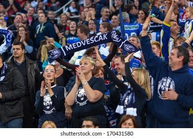 ZAGREB, CROATIA - DECEMBER 29, 2013: KHL league - Medvescak Zagreb VS Vityaz Podolsk Chekhov. Medvescak supporters celebrating goal.