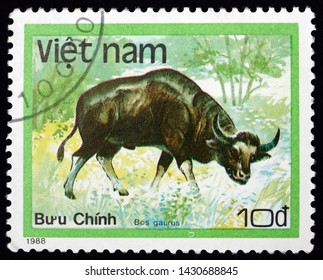ZAGREB, CROATIA - JUNE 12, 2019: a stamp printed in Vietnam shows gaur, bos gaurus, is the largest extant bovine native to the Indian Subcontinent, circa 1988