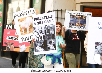ZAGREB,CROATIA - MAY 19, 2018 : People protesting against animal exploitation in slaughterhouses and holding protest signs in city center in Zagreb, Croatia.