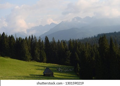 Zakopane, Poland - August 16, 2018: polish mountains