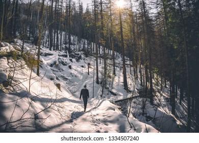 ZAKOPANE, POLAND - March 1, 2019 - Man walking in the forest in Tatras National Park in winter.
