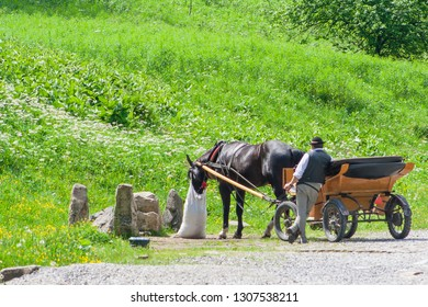 Zakopane, Poland - May 28, 2018: The coachman is standing next to a horse who is just eating from a bag attached to his head.