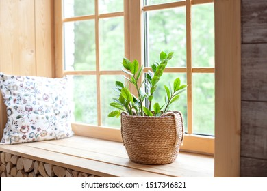Zamioculcas home plant in a straw pot on a windowsill. Comfort. The decor of the room. The concept of home gardening. Zamioculcas potted on the windowsill of the house. Scandinavian. place for text - Shutterstock ID 1517346821