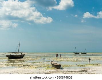 ZANZIBAR, TANZANIYA- JULY 10: beautiful landscape with fishing boats on the shore on July 10, 2016 in Zanzibar