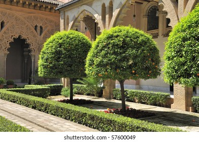 Zaragoza (Aragon, Spain) The yard of the Aljaferia palace with orange trees