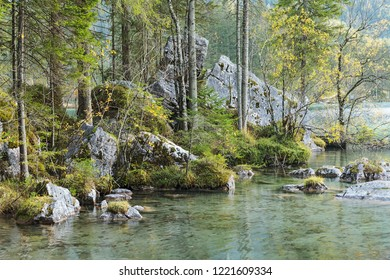 Zauberwald (Magic Forest) at the mountain lake Hintersee in Bavaria, Germany with boulders originating from a sturzstrom. Landscape near Ramsau bei Berchtesgaden.