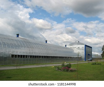 Zavodoukovsk city, Tyumen region, Russia, September 6, 2009: the Building of municipal treatment facilities is in the forest. At a municipal enterprise.