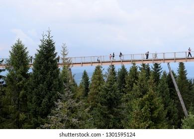 Zdiar, Slovakia - August 15, 2018: Bachledka SKI - walk through the crowns of trees