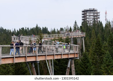 Zdiar, Slovakia - August 15, 2018: Bachledka SKI - walk through the crowns of trees