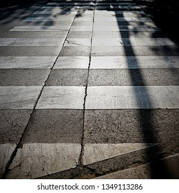 Zebra crossing in backlight in the old town of Porec in Croatia