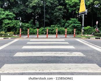 Zebra Crossing Crosswalk