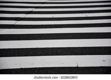 Zebra Crossing for pedestrians