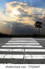 zebra crossing and sunbeam