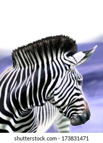 Zebra horse, digital image processing from photo.